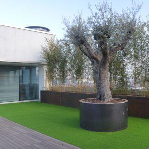 Progetti | Bonfante Giardini | Vendita Installazione Prato Sintetico ...